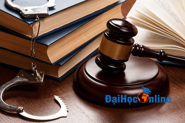 Đại học Luật gồm những ngành nào 2