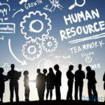 Học ngành quản trị kinh doanh ra trường làm gì?