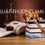 Ngành luật thương mại và tương lai nào cho cử nhân luật thương mại?