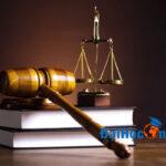 Đại học Luật gồm những ngành nào?
