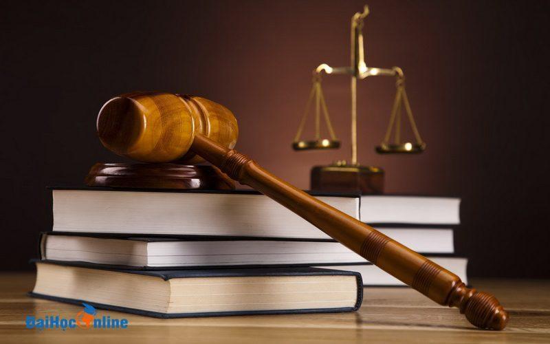 Những tố chất cần có của đại học từ xa ngành luật kinh tế