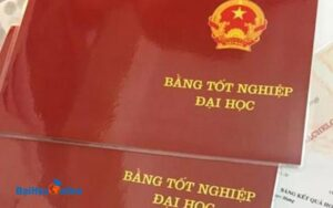 Dai Hoc Tu Xa Nganh Luat Nhung Dieu Ban Can Biet Truoc Khi Hoc 2